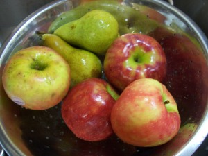 honeycrisp-apples-001