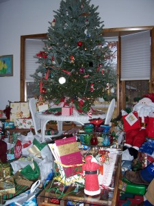 christmas-and-new-years-2006-07-01818