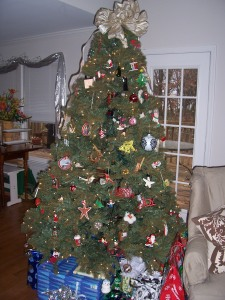 our-tree-001