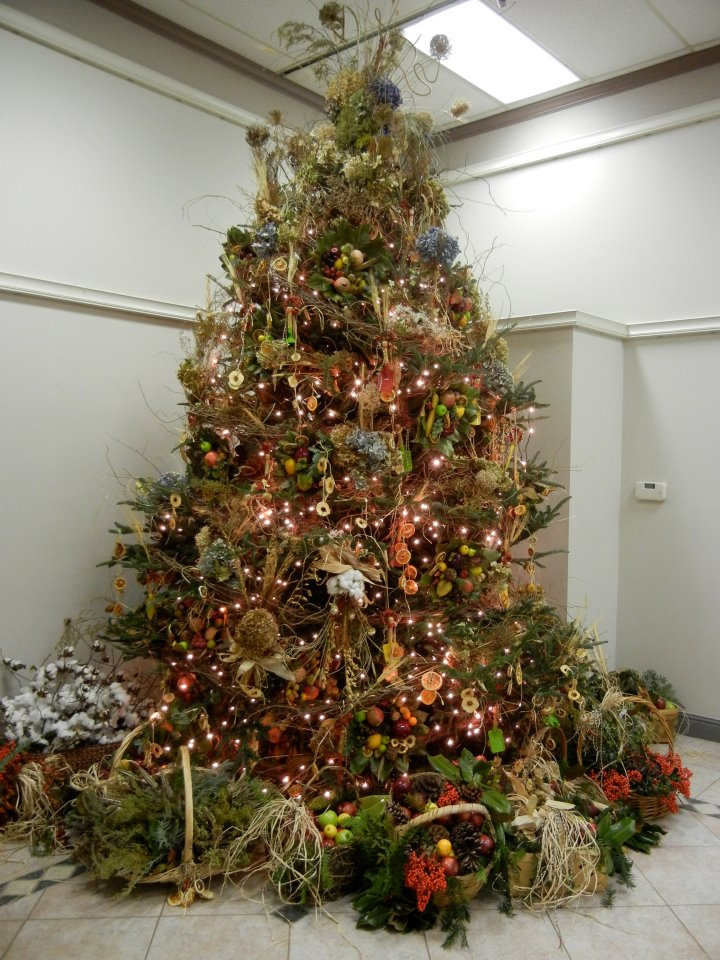 i bet my office beats your office in christmas trees at